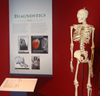 Medical Exhibition Page | Augusta Museum of History